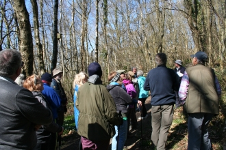 Alun and Chwiler Living Landscape guided walk