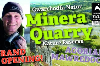 Minera Quarry nature reserve flyer