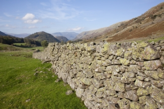 dry stone wall - peter cairns - 2020vision