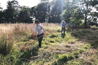 Scything with Wild About Mold project