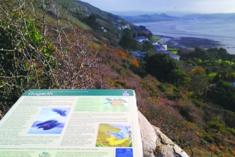 Gogarth Nature Reserve panel
