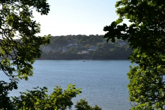 Menai Straits framed by trees