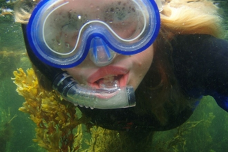 Snorkelling - Anna Williams North Wales Wildlife Trust